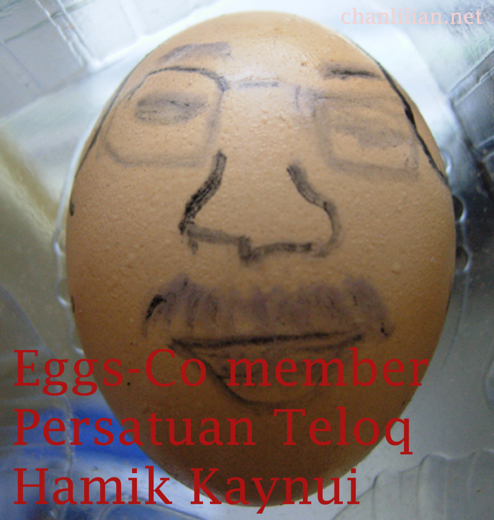 I look like Hamid Albar, I stinks like Hamid  but I am not Hamid, I am Hamik Kaynui